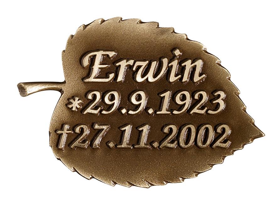 Platte - Erwin